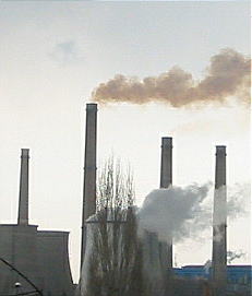 The SCC takes into account pollution.